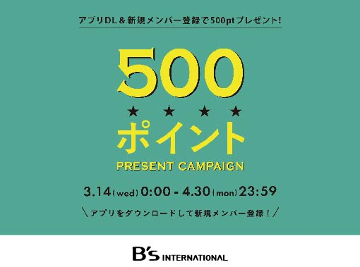 bspoint500-01